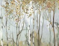 Birch in the Fog II Fine Art Print