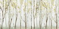 Long Landscape Fine Art Print
