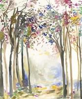 Sunny Path I Fine Art Print