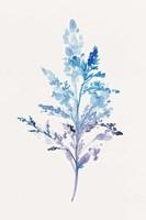 Whimsical Botanical II Fine Art Print