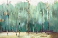 Teal Forest Fine Art Print