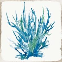 Blue Coral I Fine Art Print