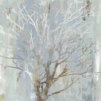 Winter Tree Fine Art Print