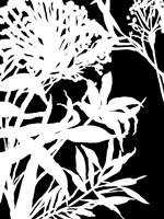 Monochrome Foliage III Framed Print