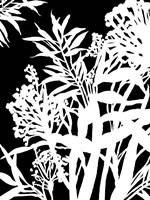 Monochrome Foliage IV Framed Print