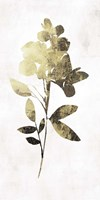 Gold Botanical I Fine Art Print