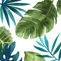 Tropical Leaves II Fine Art Print