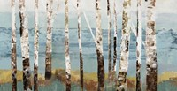 Birch Reflection Fine Art Print