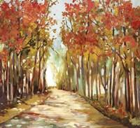 Sunny Path Fine Art Print