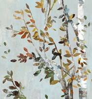 Birch with Leaves II Fine Art Print