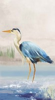 Heron on the Beach II Fine Art Print