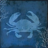 Navy Sea Crab Fine Art Print