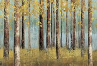 Teal Birch Fine Art Print