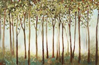 Riverside Forest Fine Art Print