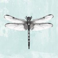 Dragonfly I Fine Art Print