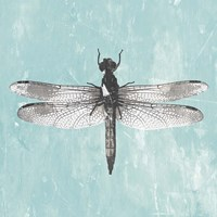Dragonfly III Fine Art Print