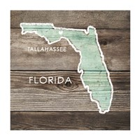 Florida Rustic Map Framed Print