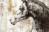 Equestrian Gold IV Fine Art Print
