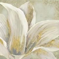 Fresh Bloom I Fine Art Print