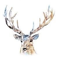 Watercolour Reindeer Fine Art Print