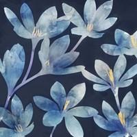 Mystique Blue II Framed Print