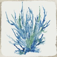 Blue and Green Coral II Fine Art Print