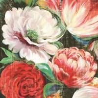 Lavish Blooms I Framed Print