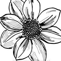 Floral Outlines I Fine Art Print