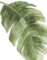 Palm Green II Fine Art Print