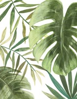 Tropical Mix I Fine Art Print