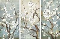 Triptych in Bloom Fine Art Print