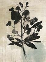 Inky Floral III Fine Art Print