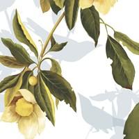Lemon Floral Fine Art Print