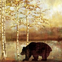 Great Bear Fine Art Print