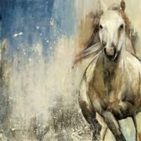 Horses I Fine Art Print