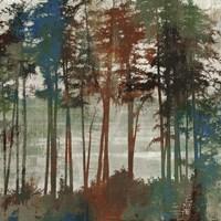Spruce Woods I Fine Art Print