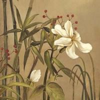 Bamboo Beuaty I Framed Print