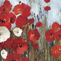 Passion Poppies I Fine Art Print