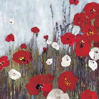 Passion Poppies II Fine Art Print