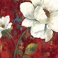 Velvet II Fine Art Print