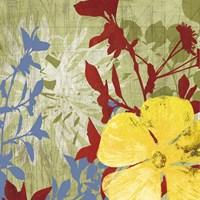 Luau Fine Art Print
