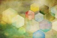 Honeycomb I Fine Art Print