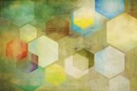 Honeycomb II Fine Art Print