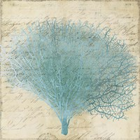 Blue Coral III Fine Art Print