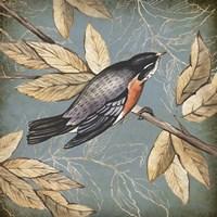 Songbird Fable I Framed Print