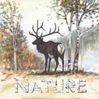 Nature Fine Art Print