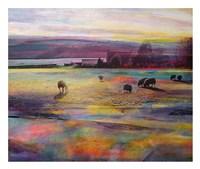 Balmy Summers Evening Fine Art Print
