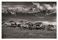 Mountain Range Mavericks Fine Art Print
