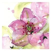 Pink Flower in the Snow Fine Art Print