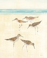 Sandpipers Crop II Fine Art Print